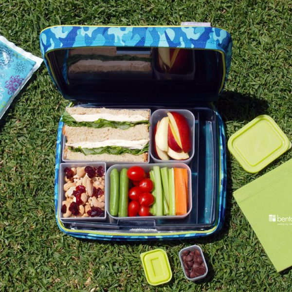 Send them off to day camp with this yummy bentololgy bento box lunch of chicken breast and arugula, cut veggies of celery, carrots, sugar snap was and cherry tomatoes, trail mix of cranberries and cashews, sliced apple, and dark or semi-sweet chocolate chips