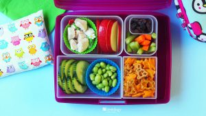 Kids' Lunches Easy Roast Chicken for Picky Eaters with Annies Snacks, Veggies, Apple, Edamame and Cucumber in bento box lunch