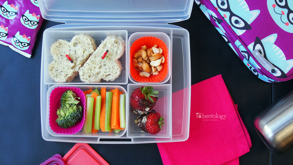 Kids' Bento Box Sweet Treat Lunch features tuna sandwich, cashews ...