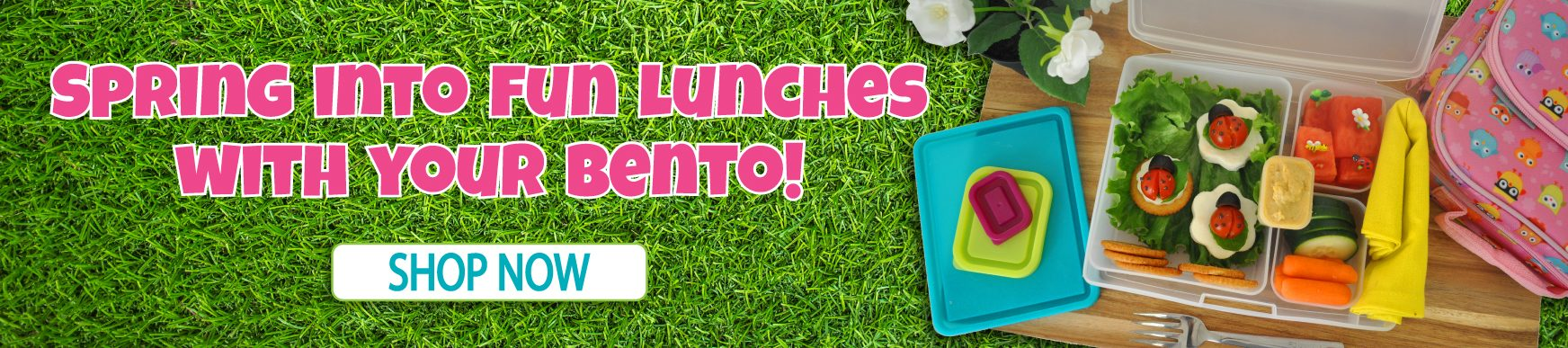 Fun Lunches are Easy with Bentology!
