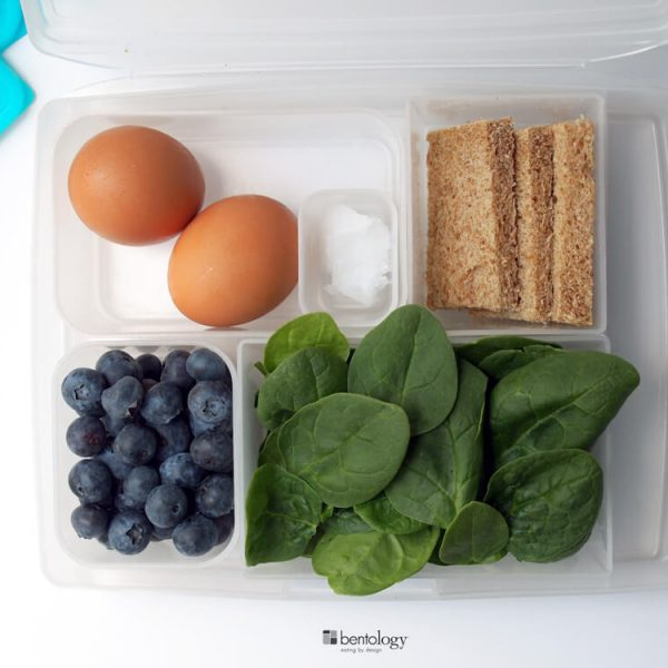 bento box lunch containers are perfect measures perfect portions