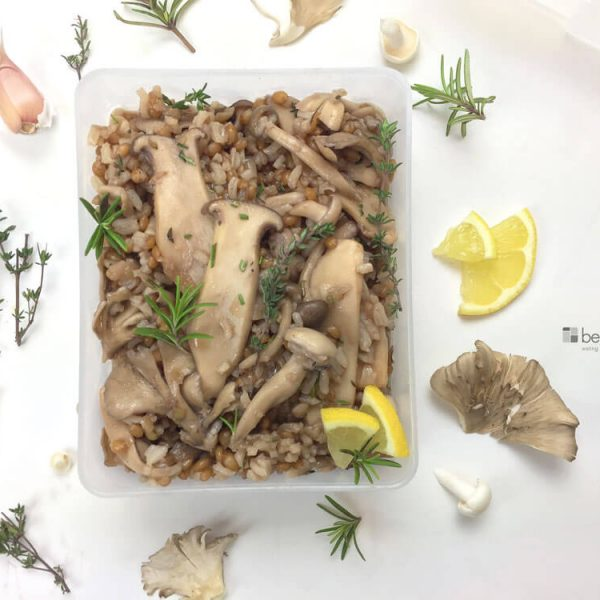 Mushroom and winter wheat berry bowl with rice and oysters, shiitake, and trumpet mushrooms