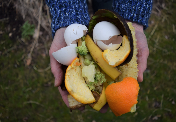 Reduce food waste with Bentology. Compost food scraps