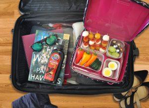 travel bento box
