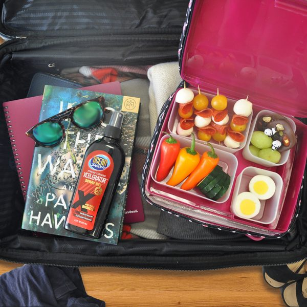 travel bento box